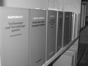 vorgerichtliche anwaltskosten antrag